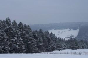 Zima 2015